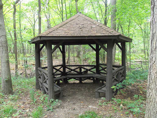 Gazebo in forest
